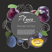 Hand drawn sketch tasty fresh fruits. Vector sketch illustration for banner, graphic template