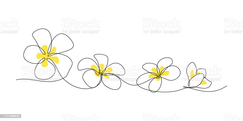 Plumeria flower border Plumeria flowers in continuous line art drawing style. Minimalist black line sketch on white background. Vector illustration Abstract stock vector