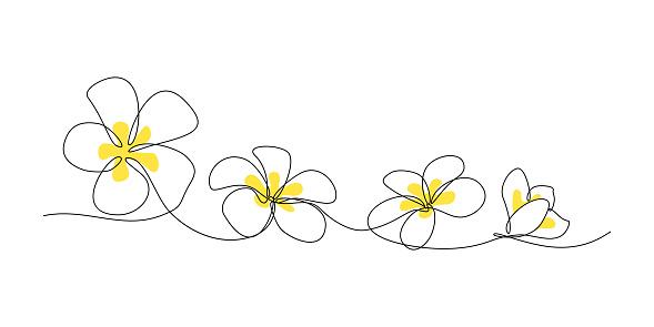 Plumeria Flower Border Stock Illustration - Download Image Now