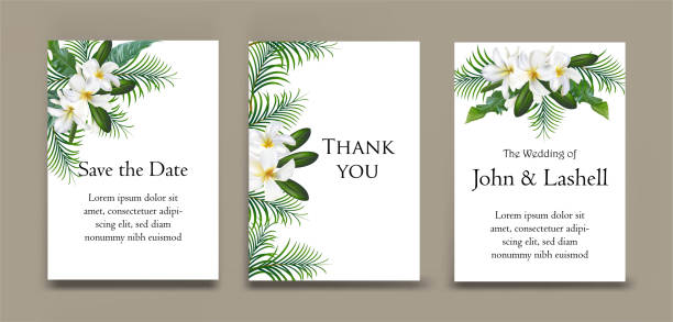 Plumeria flower on cards set Plumeria flower on cards set for wedding ,invitation,greeting card frangipani stock illustrations