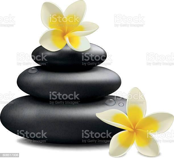 Plumeria flowers and zen stone vector id508517006?b=1&k=6&m=508517006&s=612x612&h=nerjvewtabnif1d78kbf8u lglz4hentyazpbszhe20=
