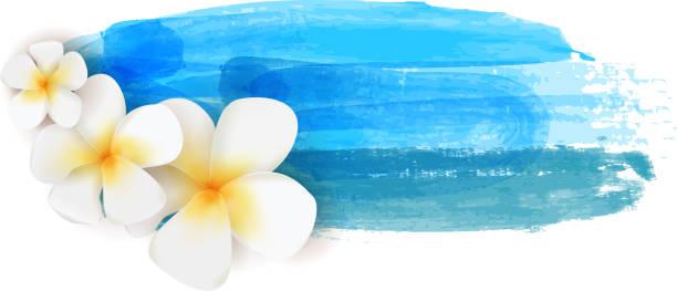 Royalty Free Frangipani Clip Art, Vector Images ...