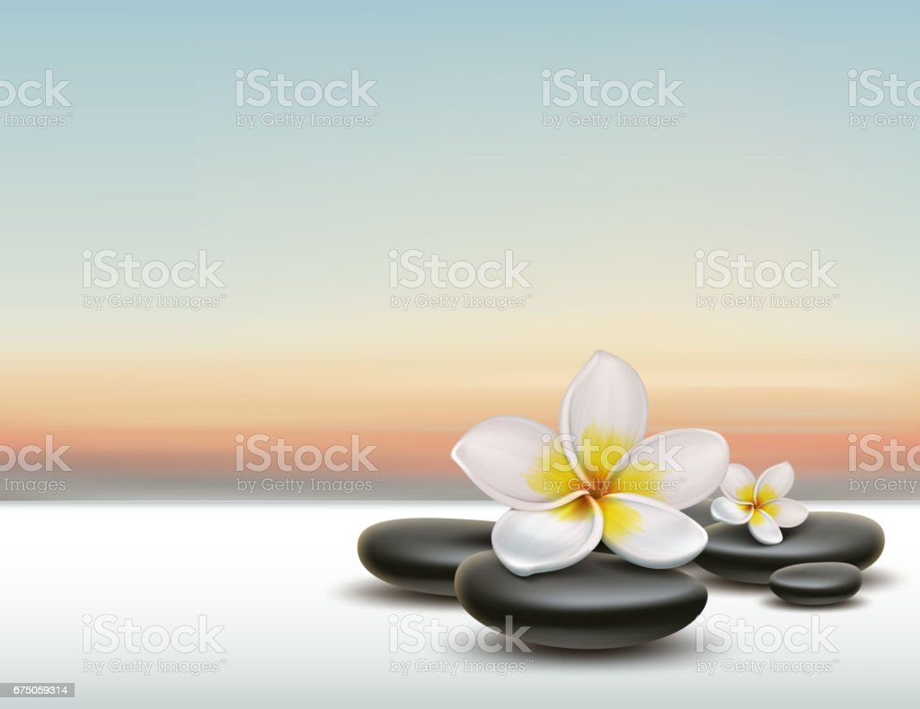 Plumeria with spa stones vector art illustration