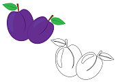 Plums fruit, coloring page. Vector illustration.