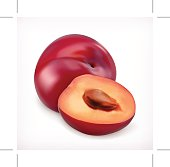 Plums vector icon