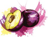 Grunge style plums - vector illustration