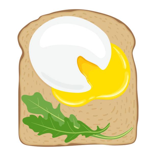 pochierte eier auf toast-brot. leckeren spiegelei-sandwich mit toastbrot. vektor-illustration. - dinkelbrot stock-grafiken, -clipart, -cartoons und -symbole