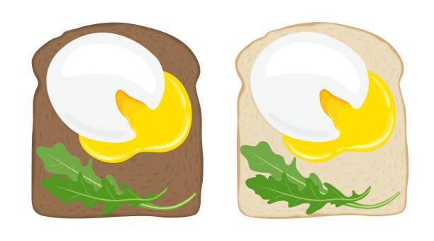 pochierte eier auf toast-brot. satz von zwei leckeren spiegelei-sandwiches auf weißem und dunklem brot. vektor-illustration. - dinkelbrot stock-grafiken, -clipart, -cartoons und -symbole