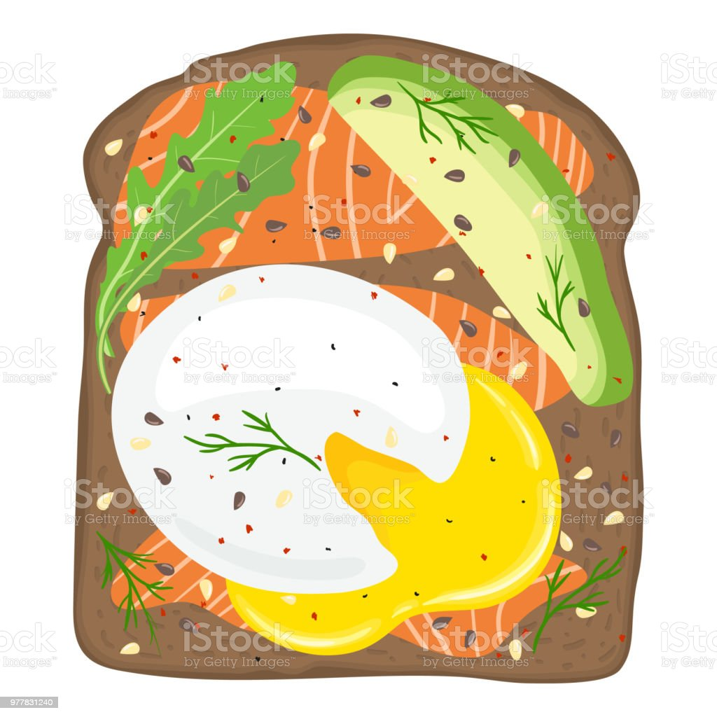 Poached eggs with salmon and avocado on toast bread. Delicious poached egg lox sandwich with toast bread. Vector illustration. vector art illustration