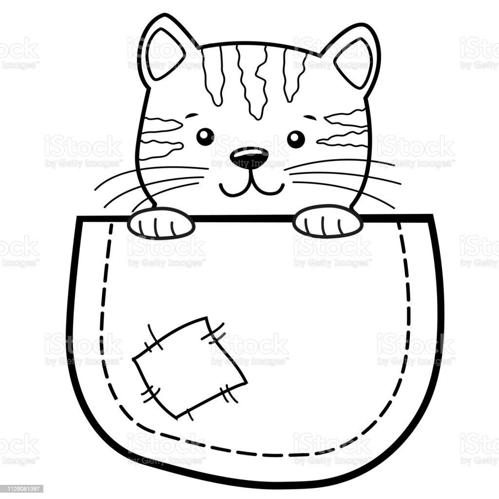 Pocket Kedi Tshirt Icin Cocukca Yazdir Kitty Ile Boyama Kitabi