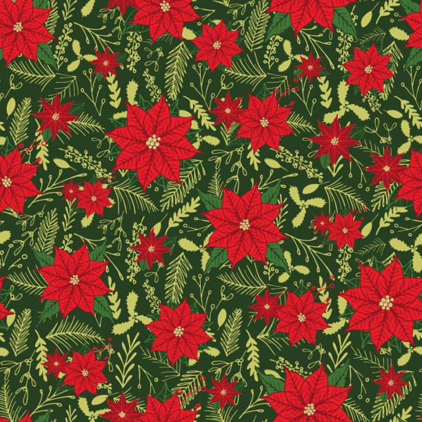stockillustraties, clipart, cartoons en iconen met poinsettia en winter gebladerte naadloze bloemmotief afdrukken. vector. - kerstster