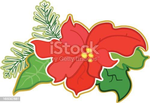 istock Poinsettia - Flor de nochebuena 165062881
