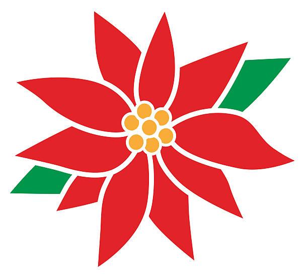 stockillustraties, clipart, cartoons en iconen met poinsettia flower - kerstster