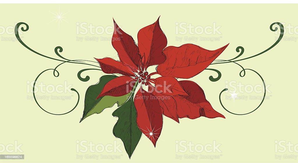 Flor de nochebuena ilustración de flor de nochebuena y más banco de imágenes de abstracto libre de derechos