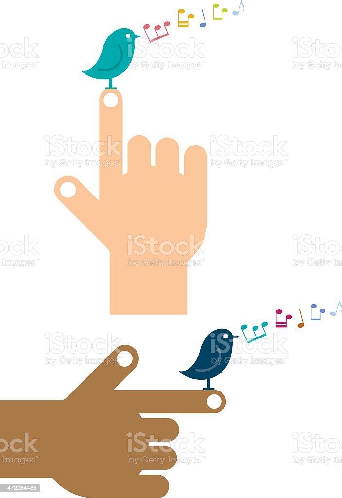 Pointing bird vector art illustration
