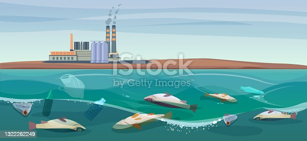 istock Poisoned dead fish in a dirty river 1322262249