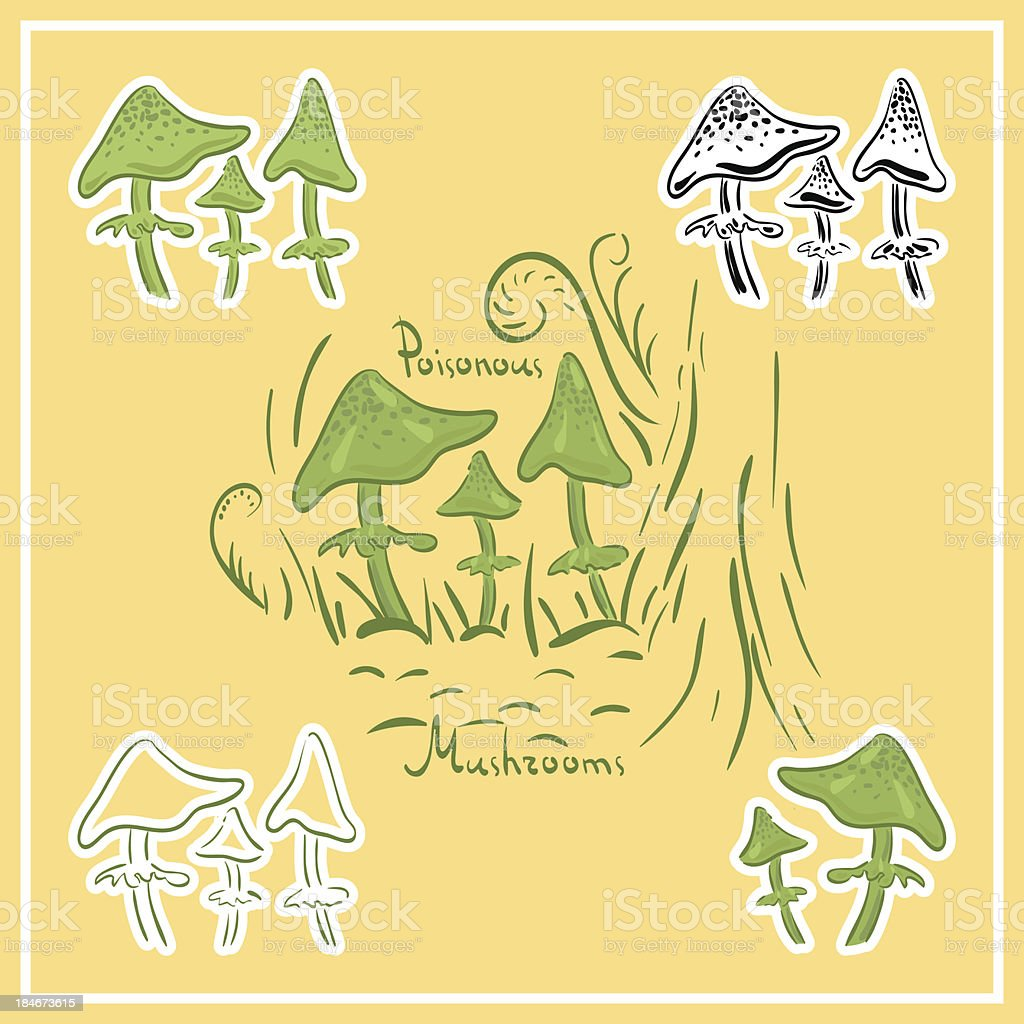 poisonous mushrooms royalty-free stock vector art