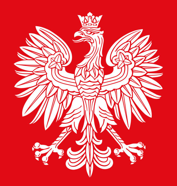Poland eagle in national colors Poland eagle in white and red colors, as patriotic background, vector national emblem. polish culture stock illustrations