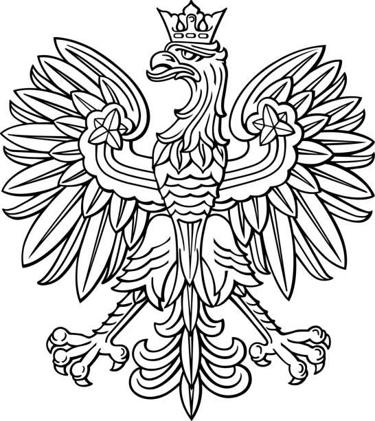 stockillustraties, clipart, cartoons en iconen met polen adelaar, pools nationaal jas voor arm - polen