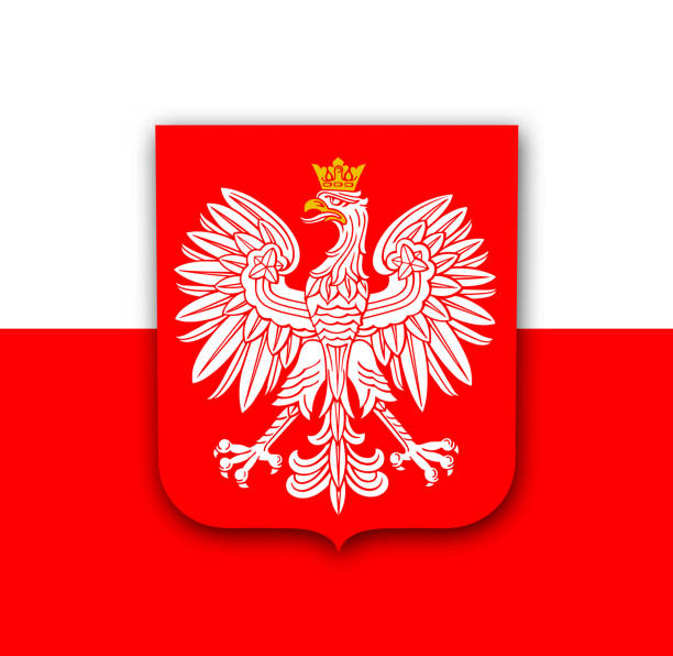 polen-flagge mit adler - flagge polen stock-grafiken, -clipart, -cartoons und -symbole