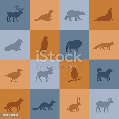 istock Polar Animal Icons 509038894