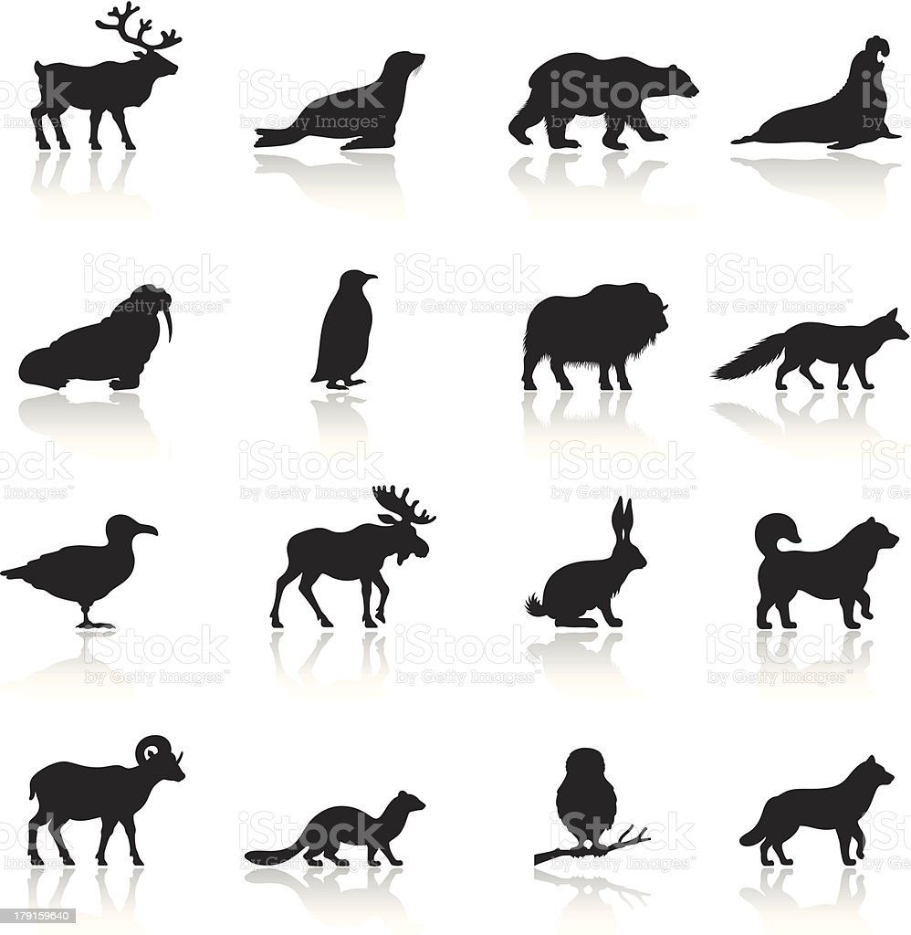 Polar Animals Icon Set vector art illustration