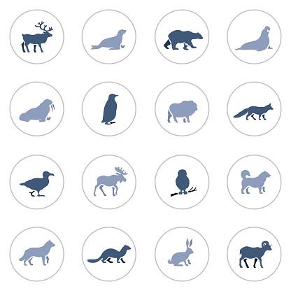 Polar Animals Icon Set