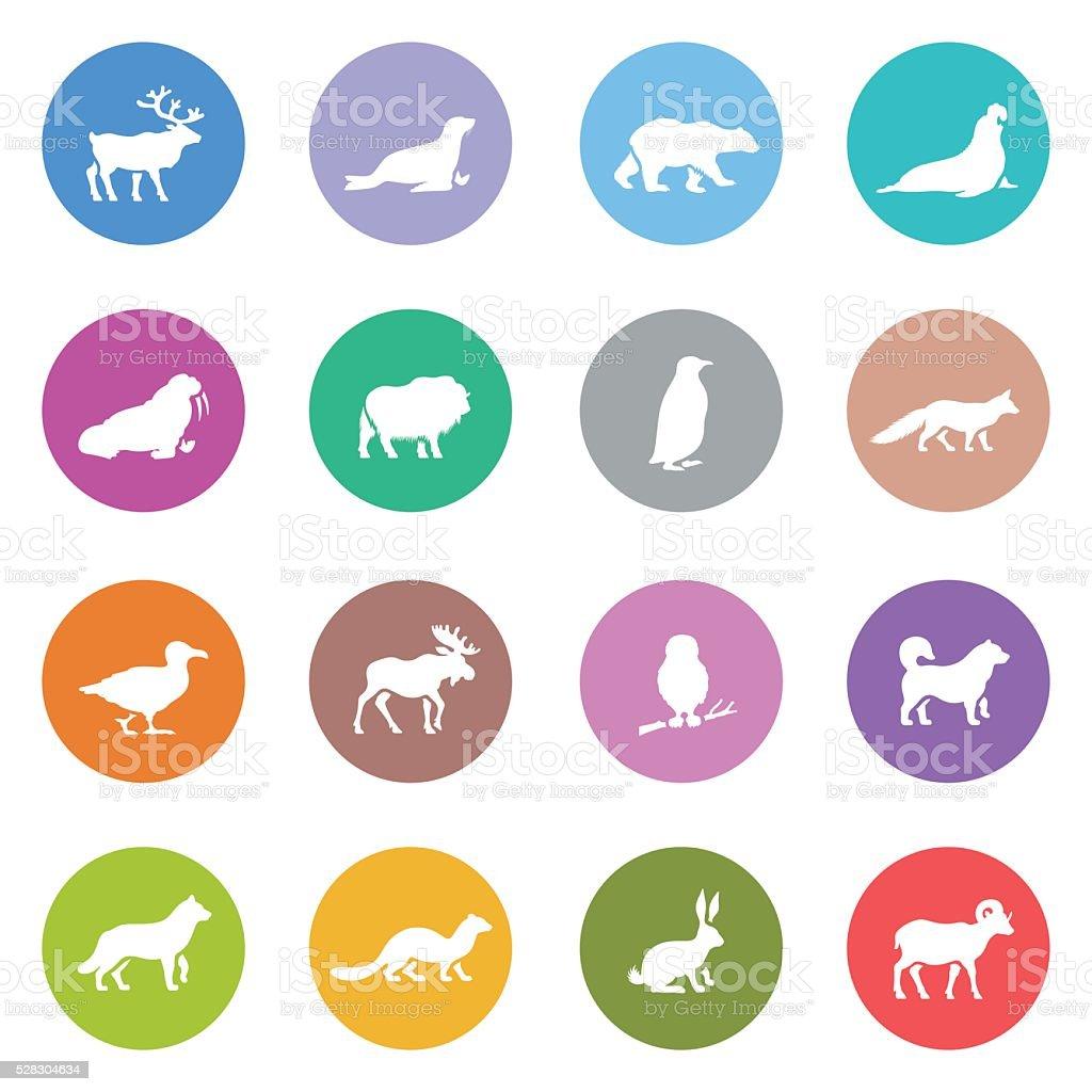 Ensemble d'icônes animaux polaires - Illustration vectorielle