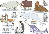 Polar animals kids drawing