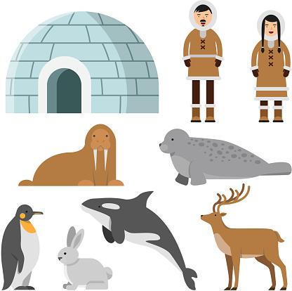Polar, arctic animals and residents of the north near eskimo ice house