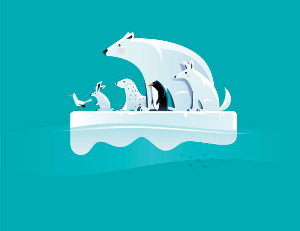 illustrazioni stock, clip art, cartoni animati e icone di tendenza di polar bear and friends standing on ice floe - climate change