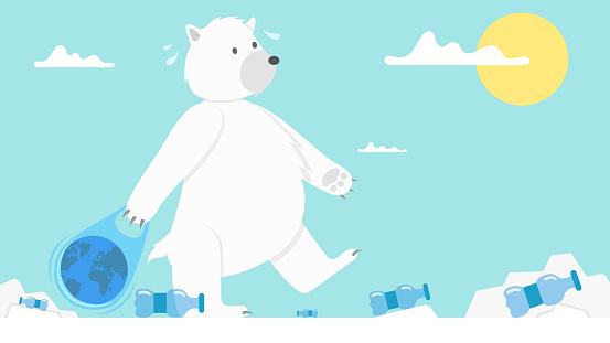 Polar bear and plastic bottle