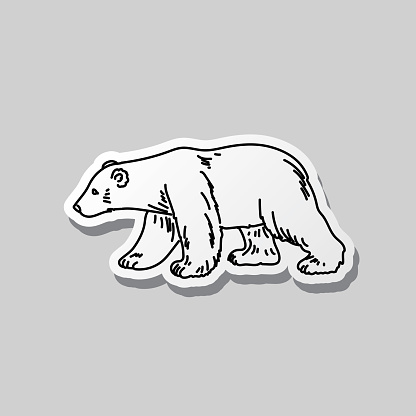 Polar Bear Black And White Doodle Canada Icon