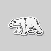 Hand drawn symbols of Canada on a grey background