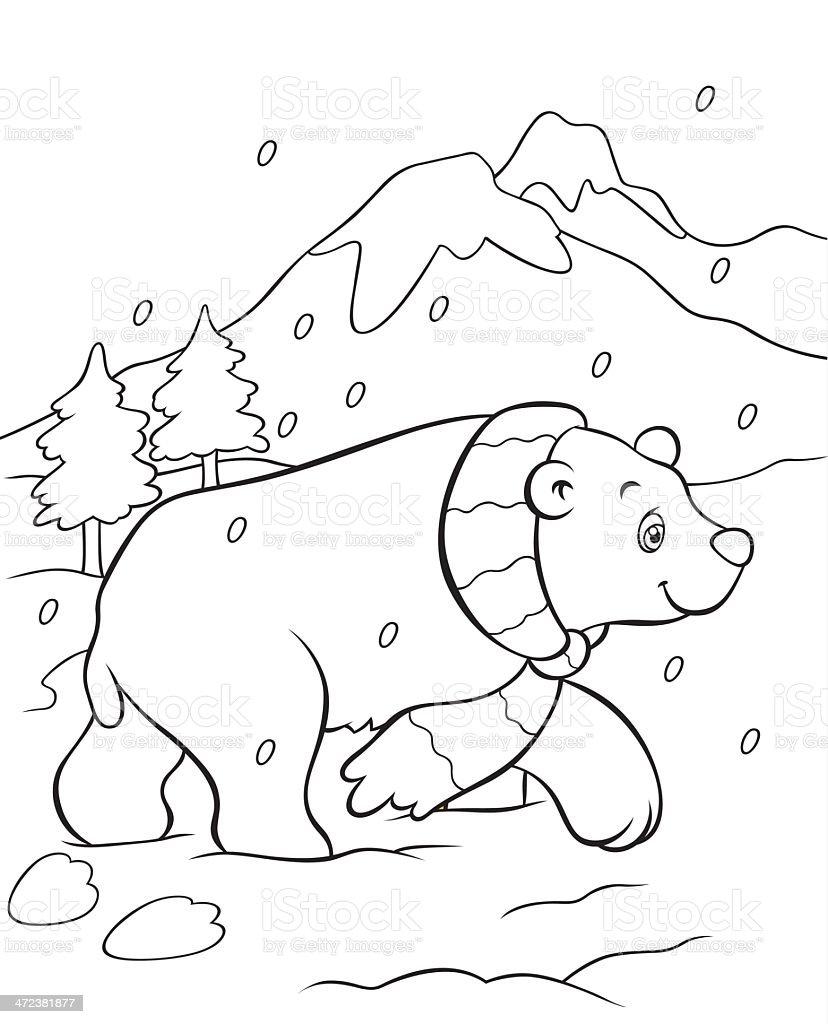 Ilustración de Oso Polar Libro Para Colorear y más banco de imágenes ...