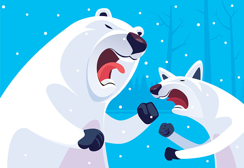 polar bear conflicting with artic wolf
