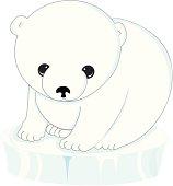 polar bear cub on ice