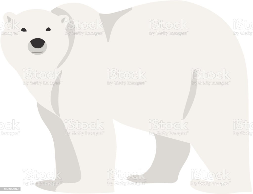 Polar bear hand drawn illustration, flat style vector art illustration