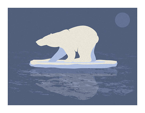 Polar Bear Illustration vector art illustration