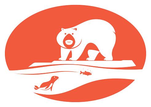 polar bear looking at seal