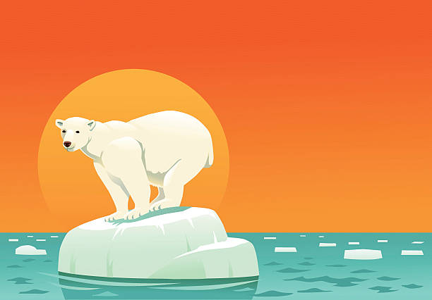 Royalty Free Ice Floe Clip Art, Vector Images ...