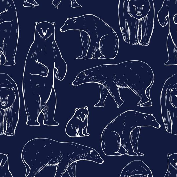 ilustrações de stock, clip art, desenhos animados e ícones de polar bear. seamless vector pattern - carnívoro