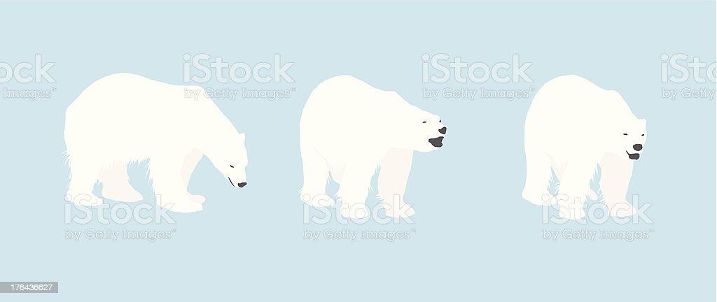 Polar Bear Silhouettes vector art illustration