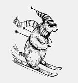 Polar bear skiing. Hand drawn illustration converted tovector