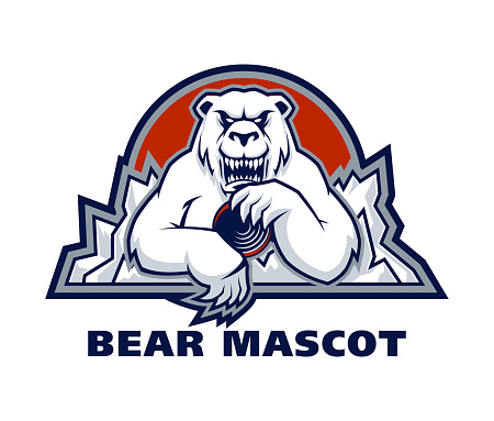 Polar bear sport mascot