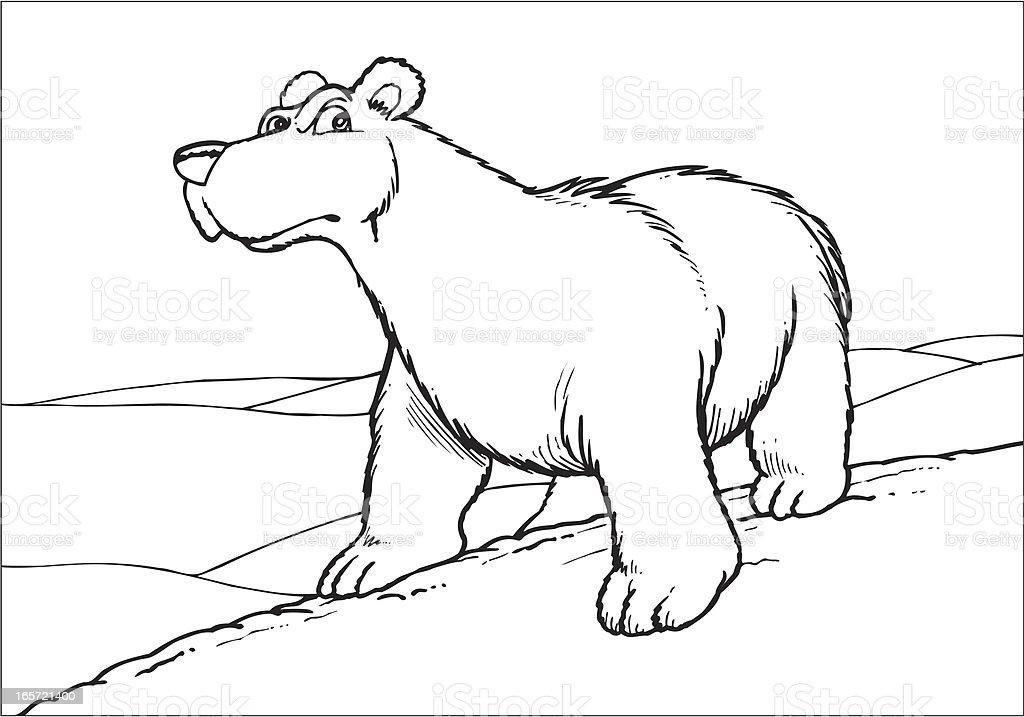 Polar bear vector art illustration