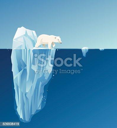 Polar bear with background.