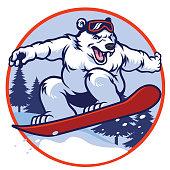 polar bear with snowboard