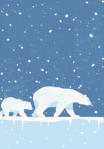 Polar Bears in the Wild Polar Bears in a wintery landscape. eps10 file, CS5 version in zip. arctic stock illustrations