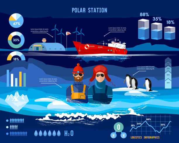 polar station. travel to antarctica infographics. scientific station on north pole. fauna of antarctic polar bear penguins. scientific polar explorers template design - antarctica travel stock illustrations